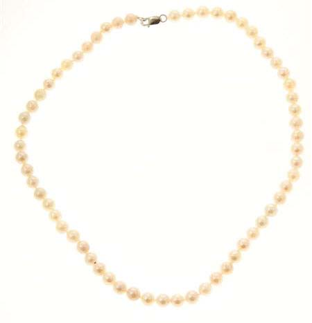 White Akora Pearl Necklace